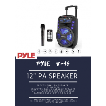 """Le produit électronique BLEUTOOTH 12""""speaker box amplifié avec 2  micro sans fills PP2512AUS au casablanca maroc ."""